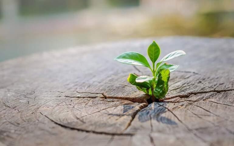 Sonu yakınlaştırın kendinize ki başlangıçlar daha kolay olsun. Sondan başlamak, başlangıçlara adım atmaktan daha nettir. Bu başarılarınızı da net ve kalıcı kılar.